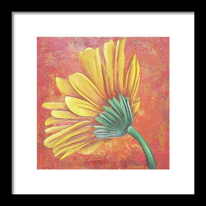Yellow Gerbera - Framed Print