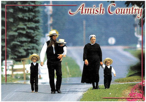 Greetings from the Amish Country Postcard