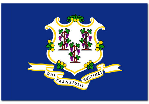 "Connecticut State  4"" x 6"" Flag"