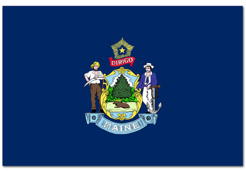 "Maine State  4"" x 6"" Flag"