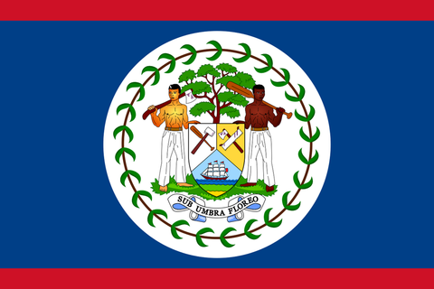 "Belize 4"" x 6"" Flag"