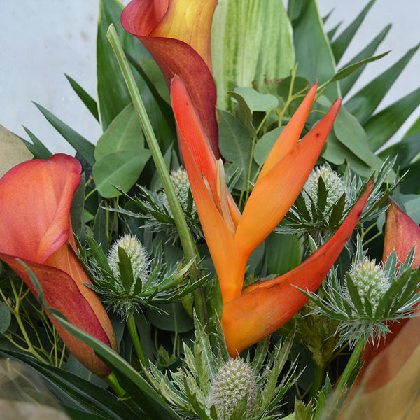 Exotic Hand Tied Gift (Orange/Green)
