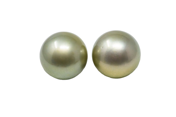 11.4mm Tahitian Pearl Stud Earrings, Colored Pistachio, 14k Gold