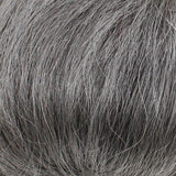 gray huamn hair 51