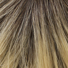 02-6 | Root 04/22 - Dark Brown Root, the rest is Beige  Blonde