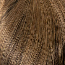 04/08GR - Dark Brown w/Light Chestnut Brown Front and Temple