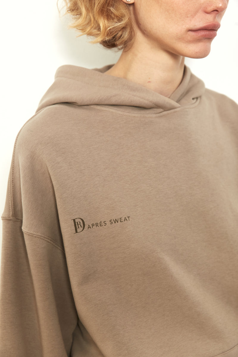 DR hoodie sweatshirt in Coffee