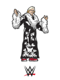 FiGPiN WWE Nature Boy Ric Flair