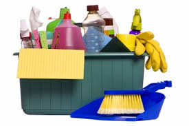 Research on Indian household cleaning  market - Training