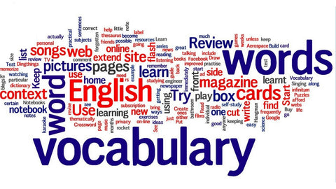 Summer Camp - Vocabulary & Memory (Saket)