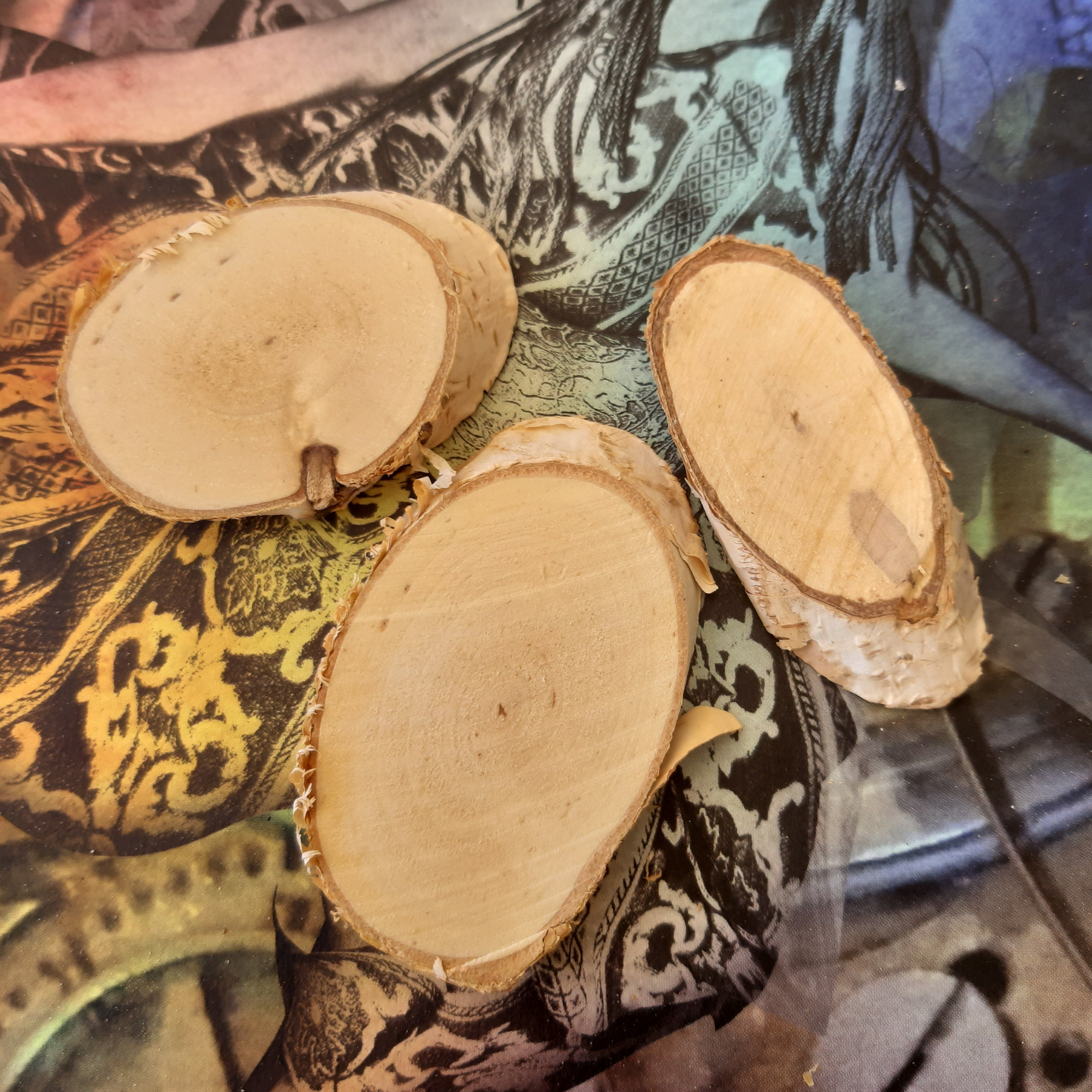 ShokART Set of 3 Natural Wood Slices, Craft Shapes & Bases by The Craft House