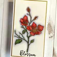 Load image into Gallery viewer, NEW ECD Blossom Stamp- CS224