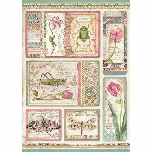 NEW Stamperia A4 Decoupage Rice Paper - Botanic Cards DFSA4360 - DaliART