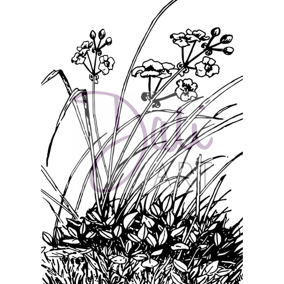 DaliART- Meadow Flowers Stamp - DaliART