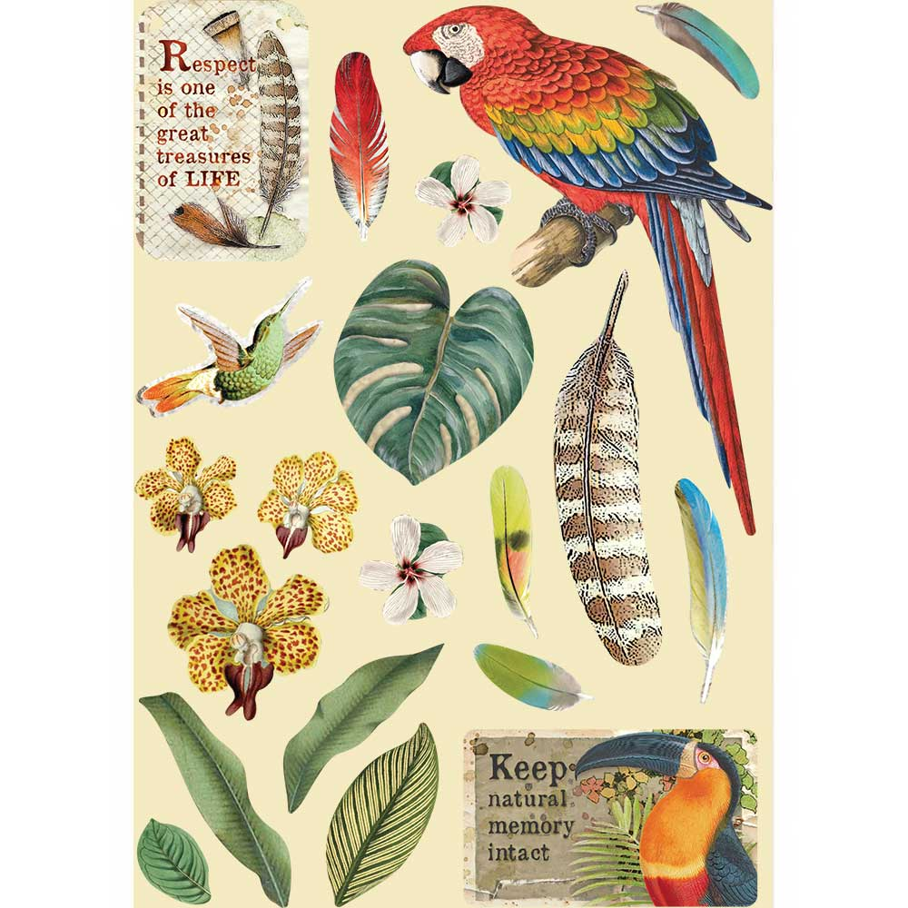 New Stamperia Wooden Shapes A5 Amazonia Parrot KLSP095