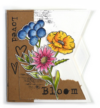 Load image into Gallery viewer, Elizabeth Craft Designs WaterColour Set