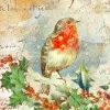 Stamperia 24x60cm Decoupage Rice Paper -Robin Ivy