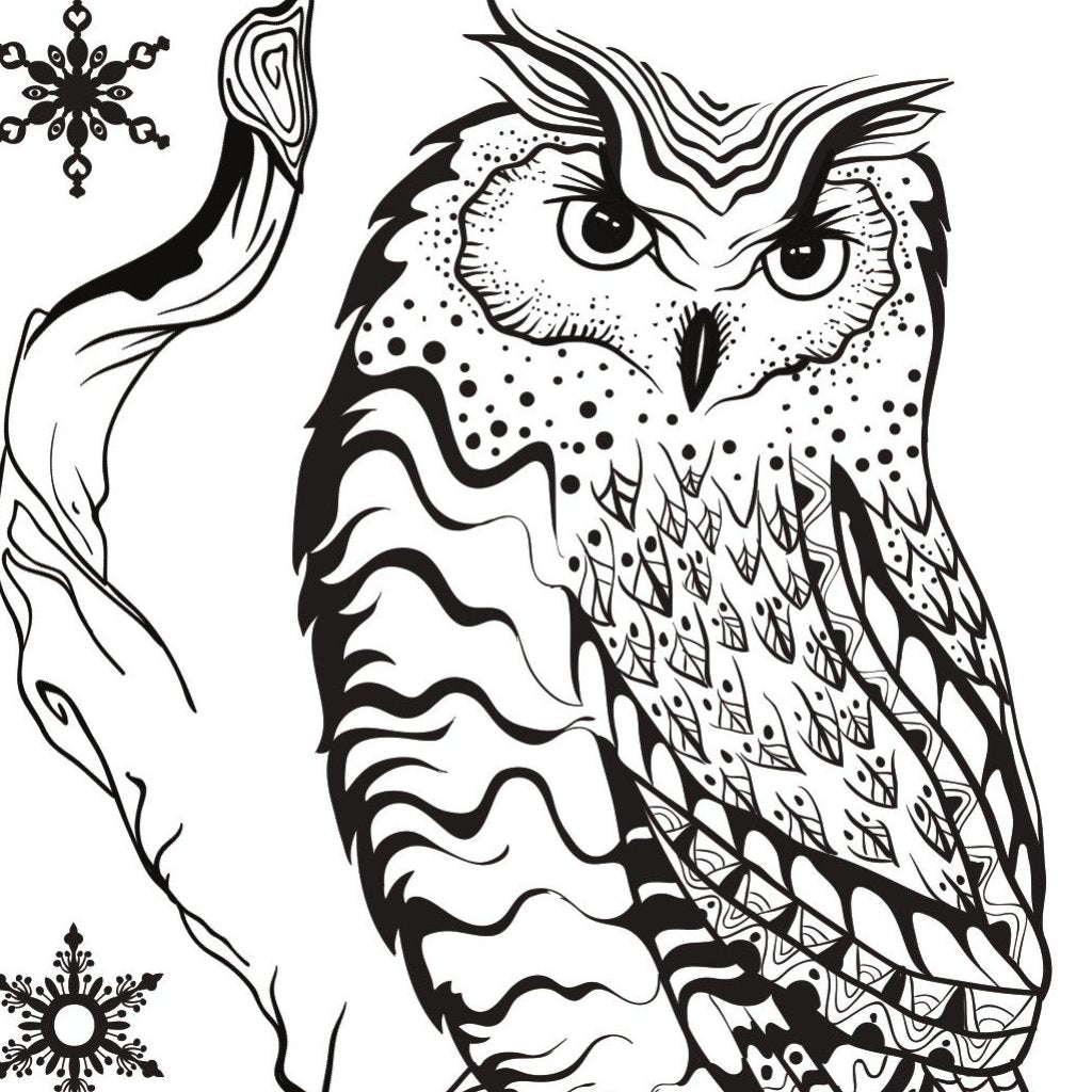 Becky Seddon 'Season's Hooting ' A6 Clear Stamp Set - DaliART