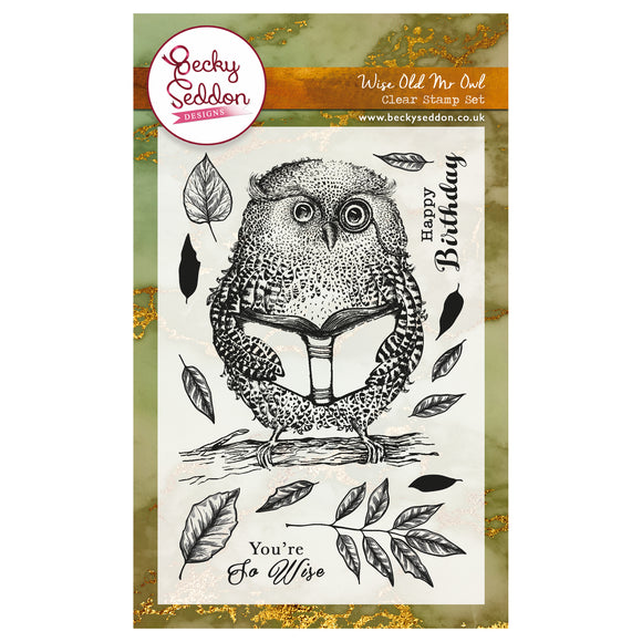 Becky Seddon 'Wise Old Mr Owl' A6 Clear Stamp Set - DaliART