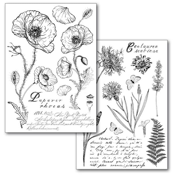 Stamperia Transfer Paper A4 Poppies - DFTR071