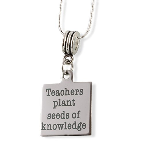 Teachers Plant Seeds Of Knowledge Snake Chain Necklace - InnovatoDesign