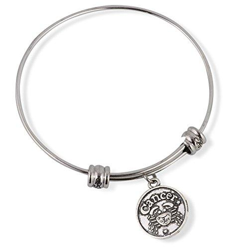 Cancer Horoscope Astrology Fancy Charm Bangle
