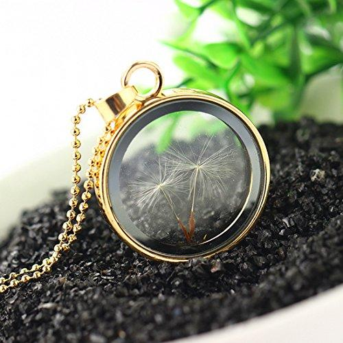 Gold Color Real Dandelion Seed Glass Pendant Necklace