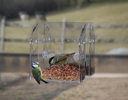 Classikool Medium Acyrlic Bird Feeder for Fat Balls & Seeds (Suction Cups)