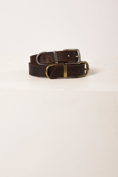 Dog Collar Brandy