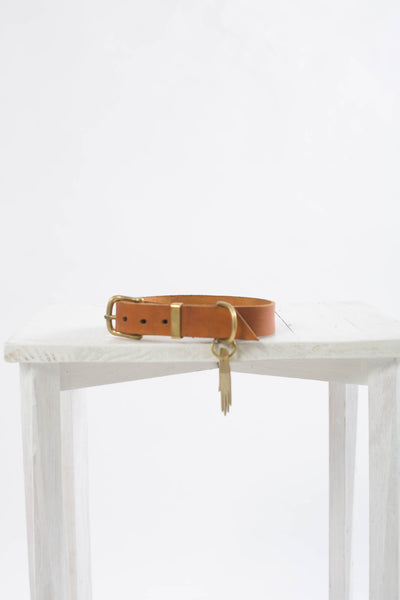 Dog Collar Whisky
