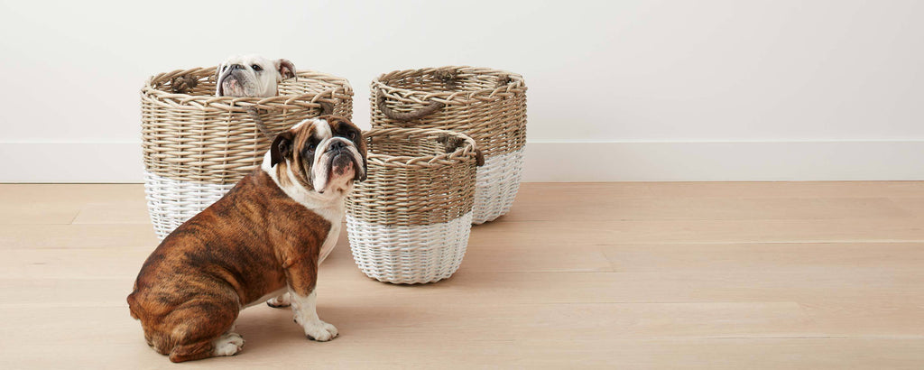 white-dipped willow baskets