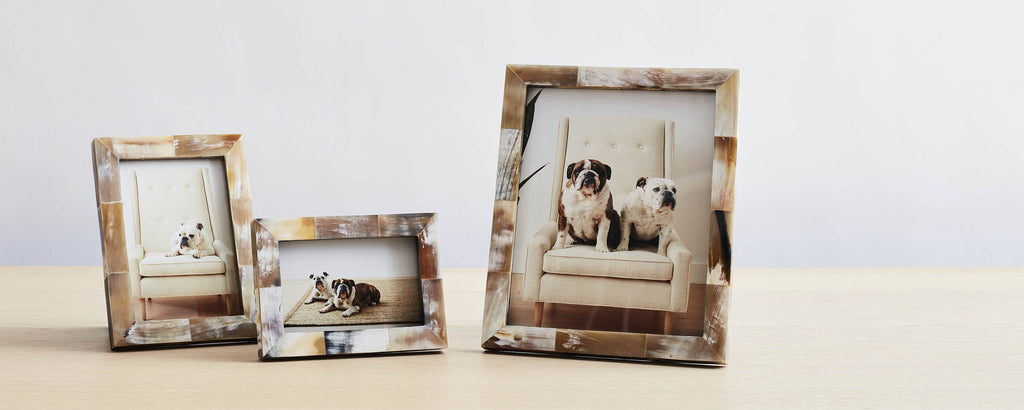 natural horn picture frames