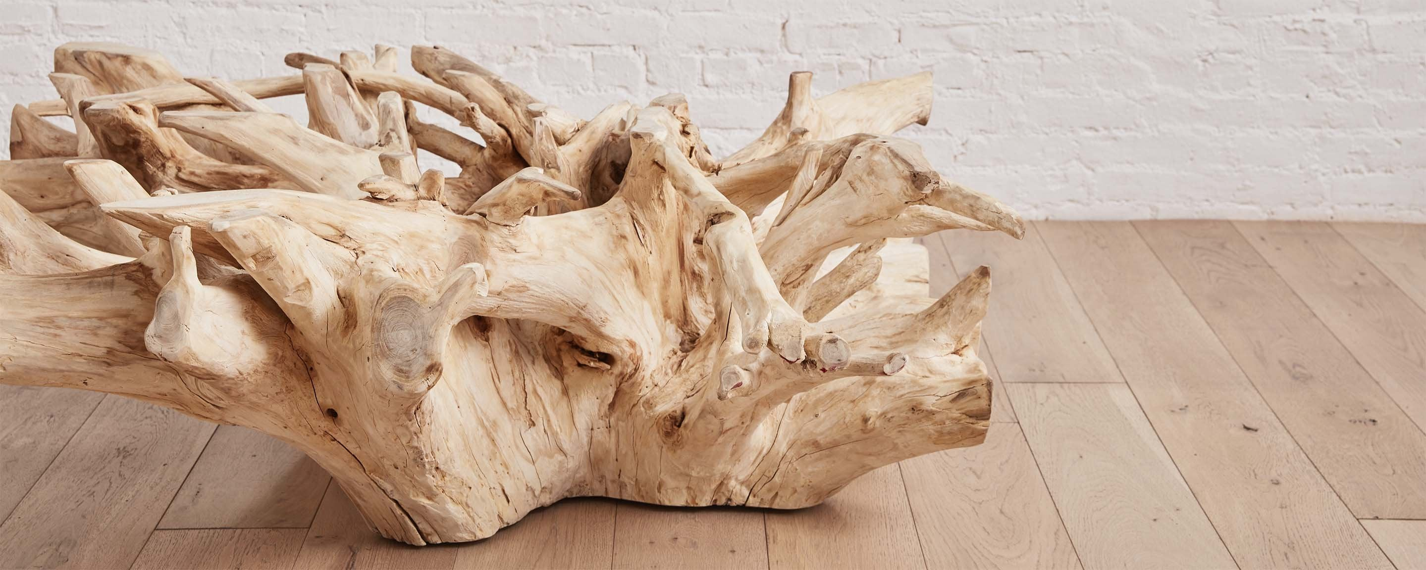 Bleached Teak Root Square Coffee Tables At Homenature Stores
