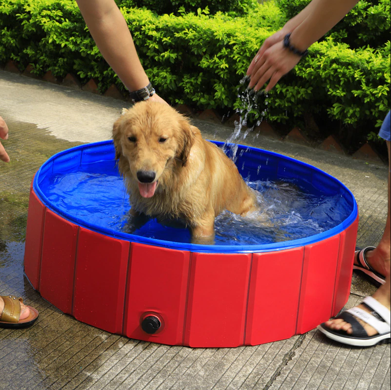 Foldable Dog Swimming Pool - Beat the Summer Heat