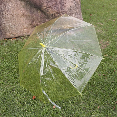 UMBRELLA,TRANSPARENT UMBRELLA