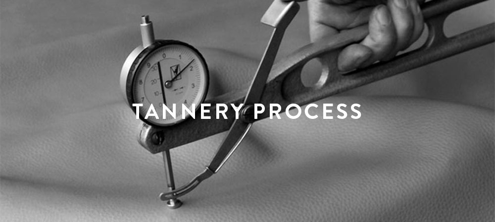 Tannery Process