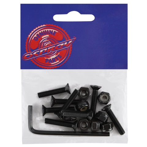 Skateboard Allen Bolt Pack-Bob Gnarly Surf