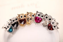 Big Eyed Owl Earrings
