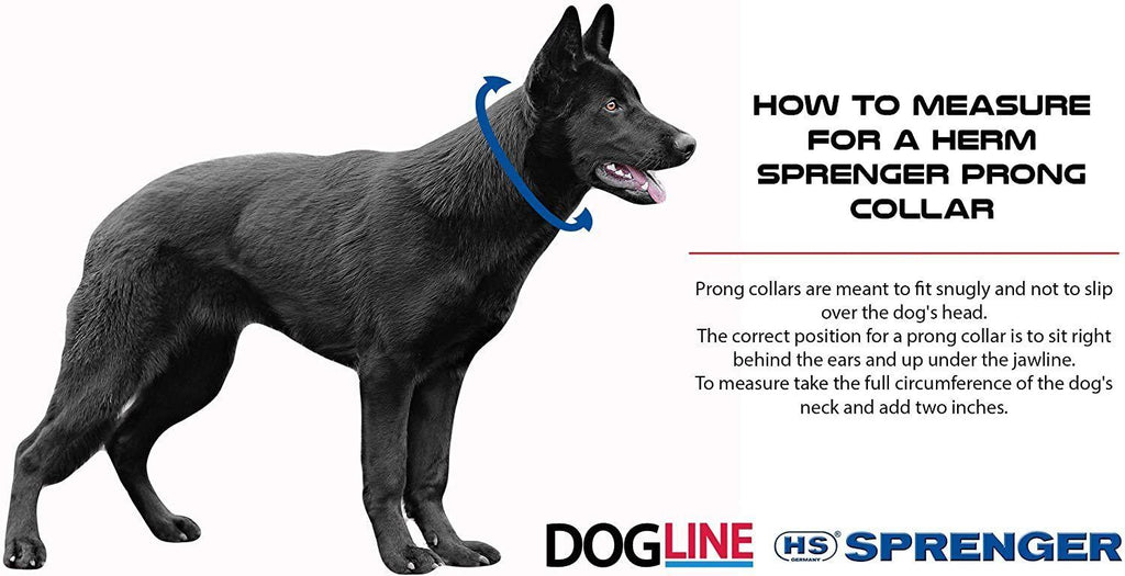 Herm Sprenger Black Stainless Steel Prong Dog Training Collar with Swivel