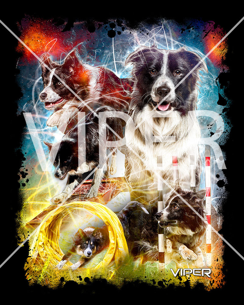 Border Collie - Energy - Shirt - Design 9
