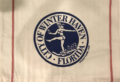 WINTER HAVEN DISH TOWEL