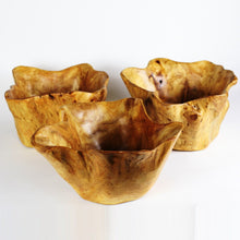 "Hand-Crafted Root Wood Live Edge Bowl - Large Salad (12-13"" x 8"")"