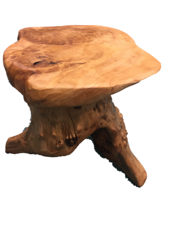Hand-Crafted Root Wood Live Edge Plant Stand / Stool (16