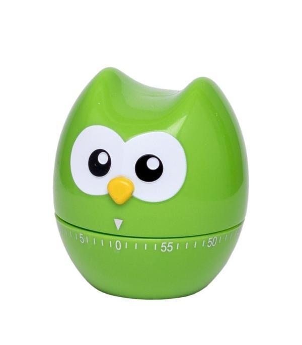 60 Minute Kitchen Timer Hoot Owl Green