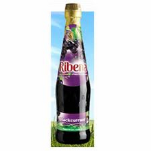 Ribena Bottle 600ml HEAVY