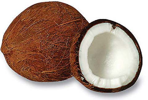 Exotic Coconut Scented Shea Butter