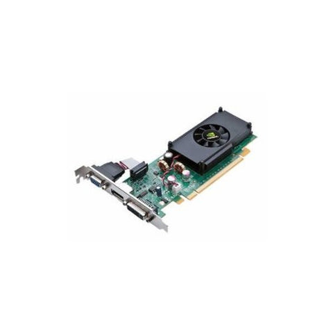 EVGA 01G-P3-1312-LR GeForce 210 PCIe 2.0 x16 1GB Video Card