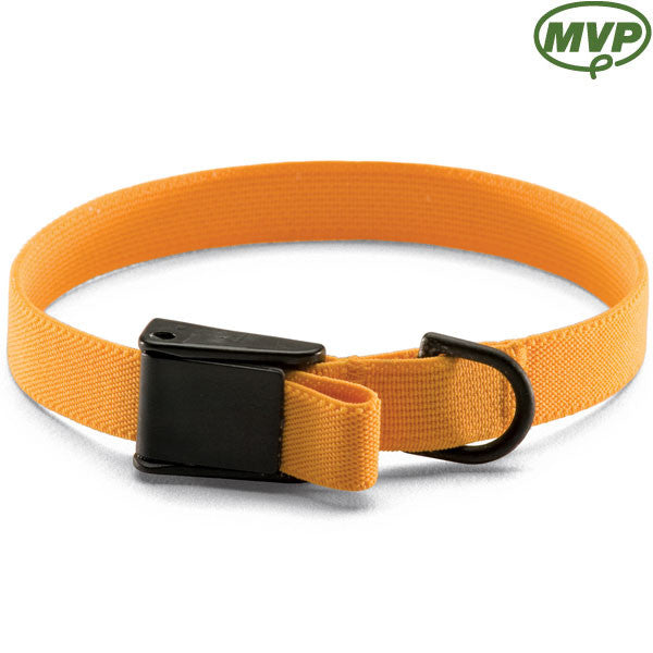 Cat Stretch Training Collar – Camloc