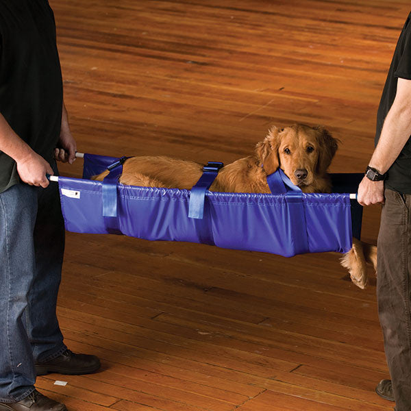 Pet Stretcher