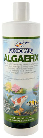 Aquarium Pharmaceuticals - PondCare Algaefix - 16 fl. oz.
